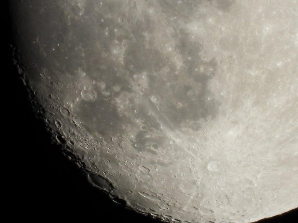 Nikon Coolpix P1000 Lunica Compatta Che Può Fotografare La