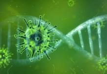 Coronavirus Nvidia Parabricks