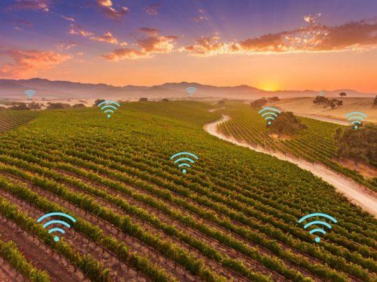 IoT Swarm