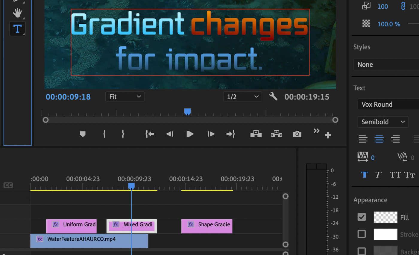 Adobe video Premiere Pro