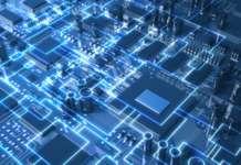 Vector Innovation Fund tecnologie