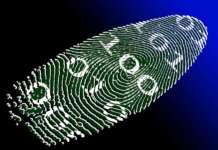 identity pixabay