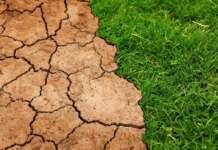 cambiamento climatico pixabay
